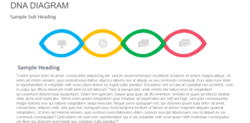 DNA diagram PowerPoint Template